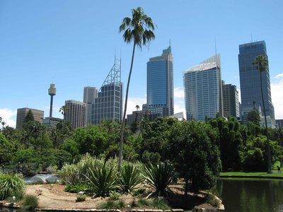 Sydney1---..rdens-a.jpg