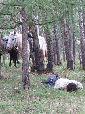 mongolian-snooze-II.jpg