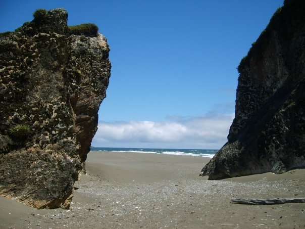 Playa del Chepu - Chiloé