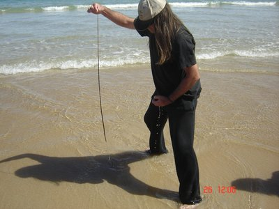 Bait catching with Chief