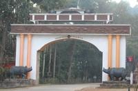 Kaziranga Reception Gate
