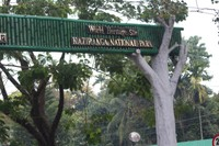 Kaziranga Entry Gate