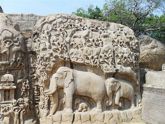 I spot and elephant!