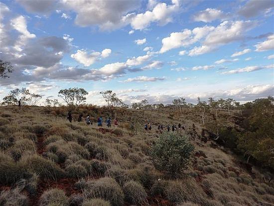 Deep Outback - road to Karninjini