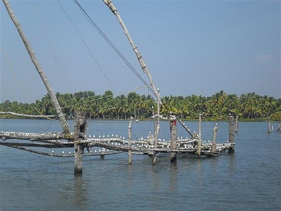 Backwaters Kerala