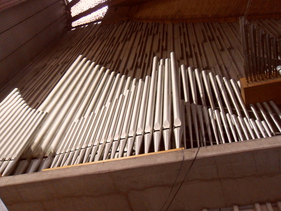The Biggest Organ in the World!
