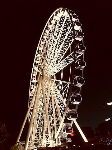 Brisbane Eye