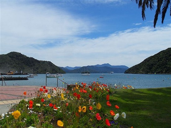 Picton Poppies, Sea Front