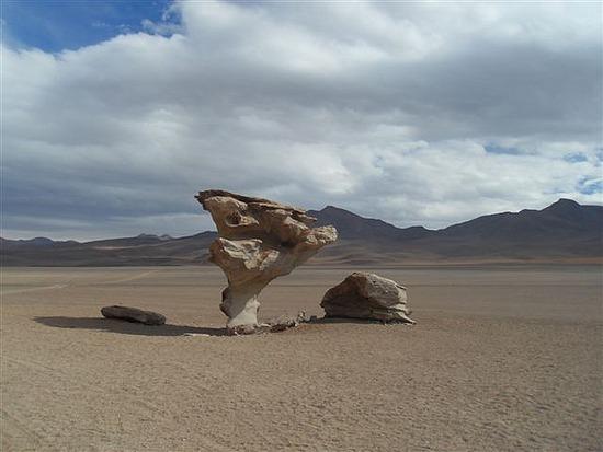 Salvador Dali Desert - Stone Tree