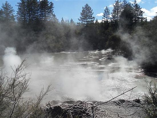 Wai-O-Tapu Steaming Lake