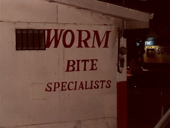 Worms Can Bite????