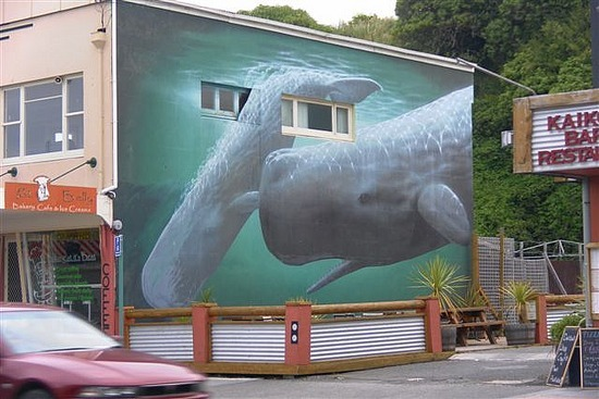Building Art, Kaikoura