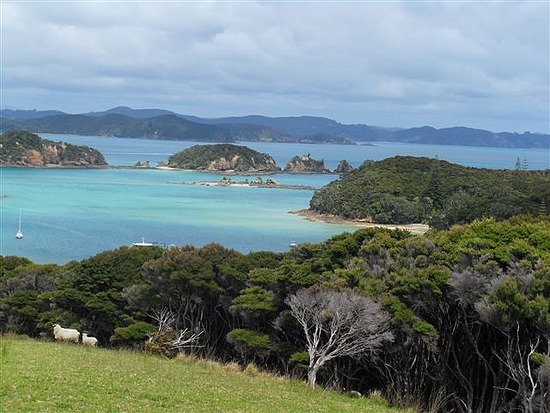 Otehai Bay, Bay of Islands