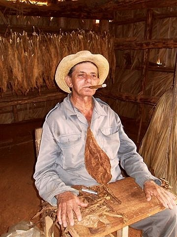 The Tobacco Guru