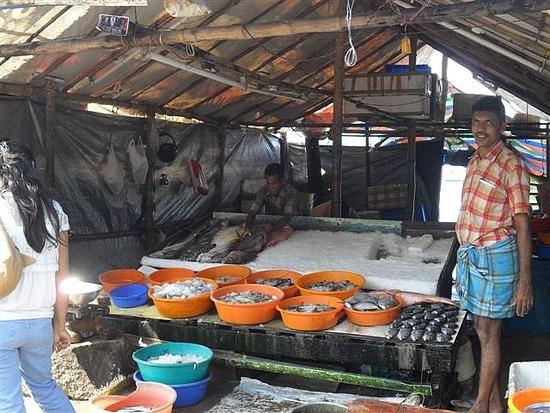 Fish Market Fort Cochin