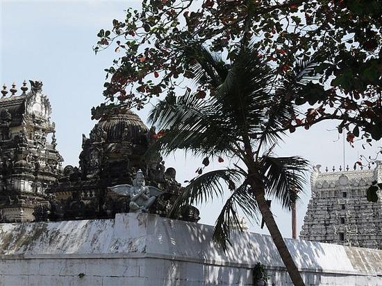 Temples Everywhere! Mamallapuran