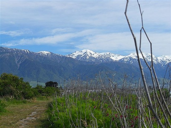 Mountain Views, Kaikoura