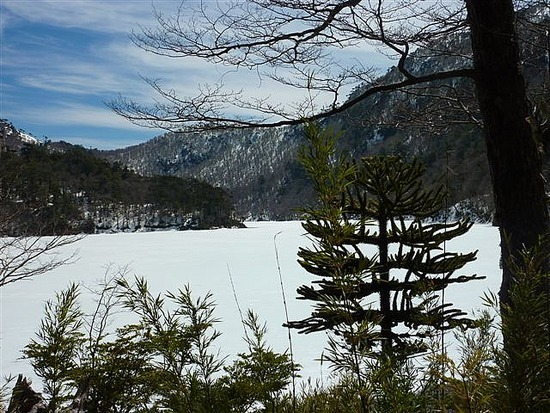 Frozen Lake Huerquehue National Park