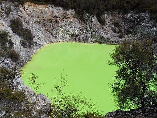 Green Mineral Lake Wai-O-Tapu
