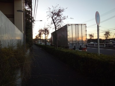 Flower trucks waiting outside Ota Market