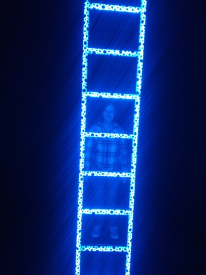 Yayoi Kusama's ladder