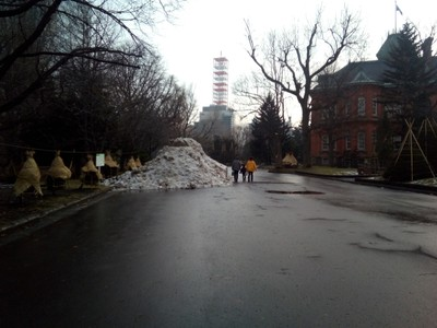 Huge pile of snow (random family for reference)