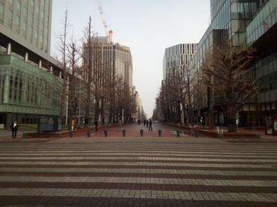 Pretty and big avenues
