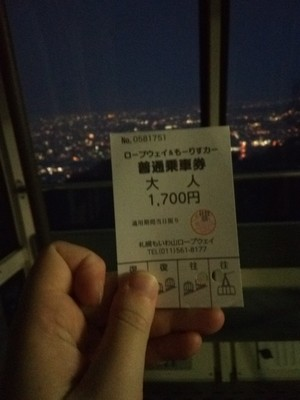 View from Mount Moiwa ft. ticket