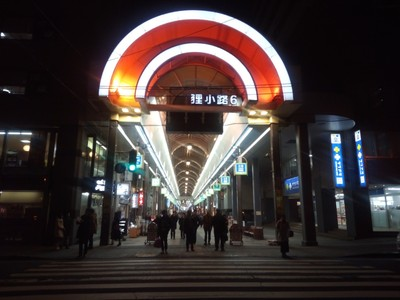 The covered shopping arcades