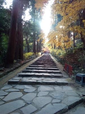 The walk up to Zuihoden